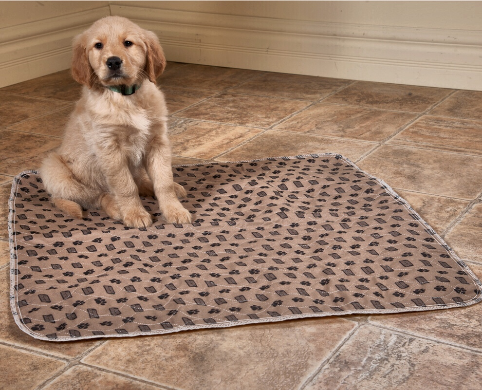 Environmentally Friendly Indoor Potty Pads